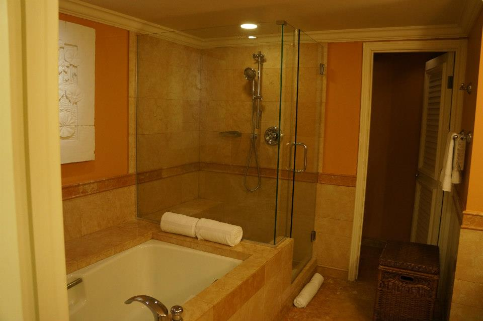 Separate tub, shower and toilet
