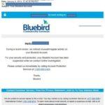 bluebirdEmail