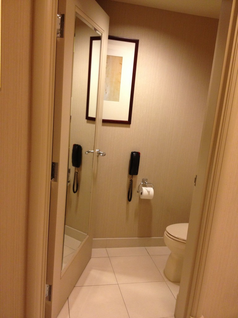 Separate toilet room with the super important phone.