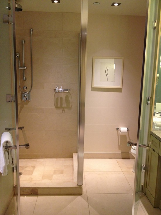Shower and toilet with doors open.
