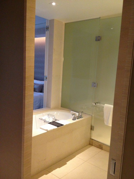 View of the bathroom upon entry - I like!